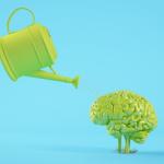 מגדלים שורשים: המוח כתא גינון